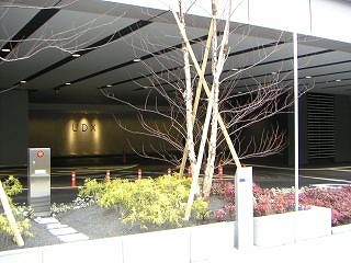 秋葉原06-0206-11