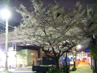 秋葉原07-0331-01
