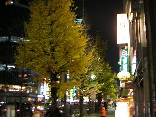 秋葉原08-1213-04