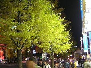 秋葉原08-1213-05