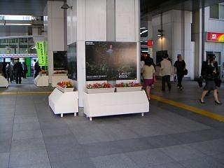 秋葉原10-0604-09