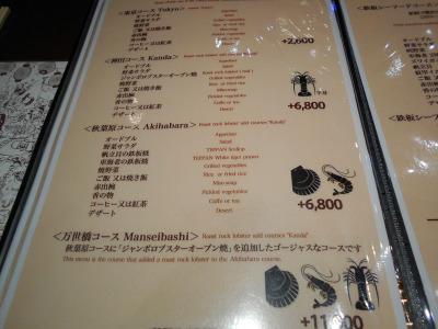 秋葉原15-0117-05