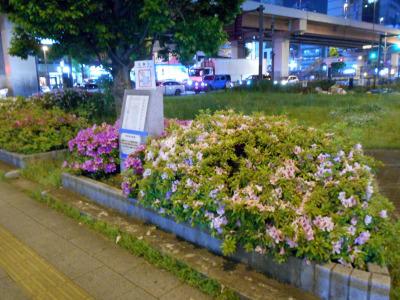 秋葉原20-0501-01
